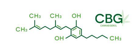CBG molecular formula. Cannabigerol molecule structure on white background. 向量圖像