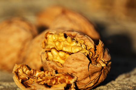 Close up of walnuts, full and broken. Pile of dried walnuts
