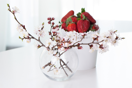 Branch with flowers of apricot on  fresh Strawberry in a bowl background