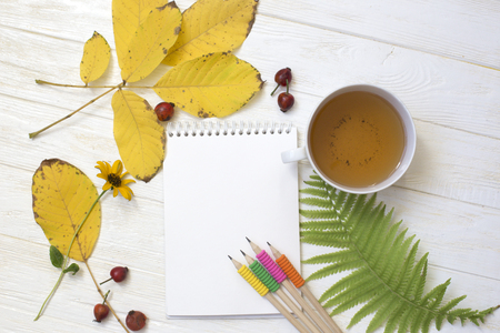 Autumn flatlay on  white wooden backdrop with a cup of tea and fallen dry yellow,  leaves, flowers. Free space for text. Stock Photo