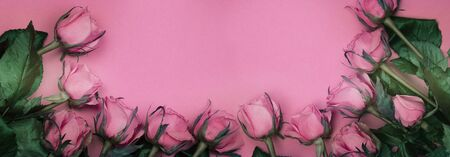 Pink roses on a pink background. Top view floral concept. 版權商用圖片