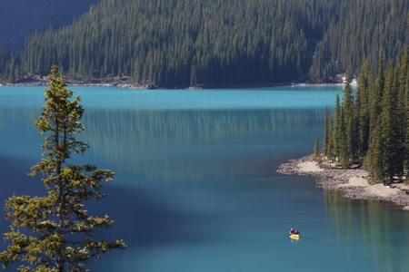 Two men in a canoe on Moraine Lake with evergreena  in background.