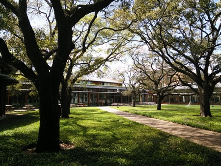 Rice University 新聞圖片