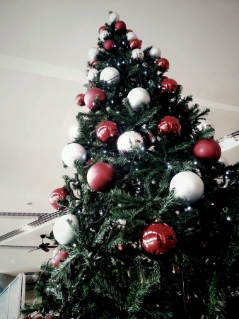 huge christmas tree: Huge Christmas Tree with red and silver balls decorations