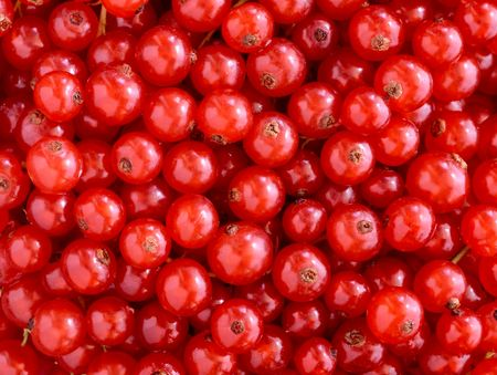 Rote Johannisbeeren Textur Standard-Bild - 5413081