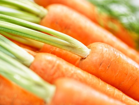 carrots isolated: Bunch of harvest-fresh crunchy carrots close-up Stock Photo
