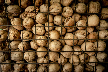 A large group of dry coconut contained in the iron cage.