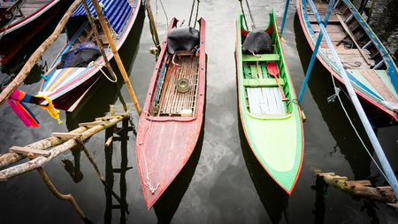 the colorful long-tails boat in different color.