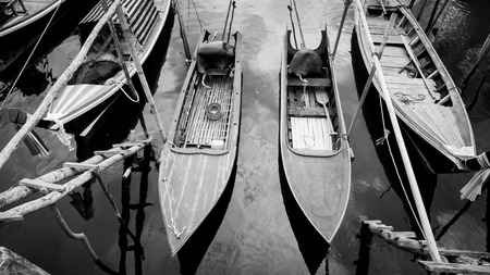 Black and white picture of long-tails boat in the quiet sea Stok Fotoğraf