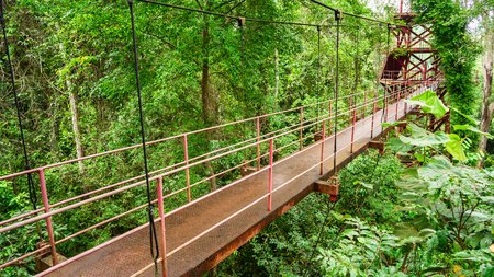 the red long iron bridge in the rainforest in Thailand