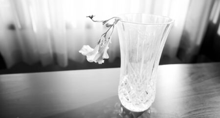 a beautiful small flower in the old glass vase. Stok Fotoğraf - 132579829