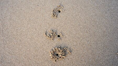 three crab's holes on the sand.