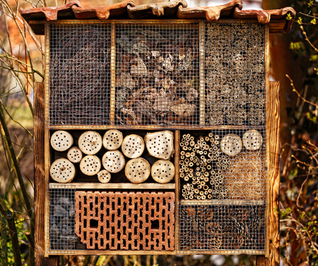 bee: Wild Bee Hotel - Insect Hotel Stock Photo