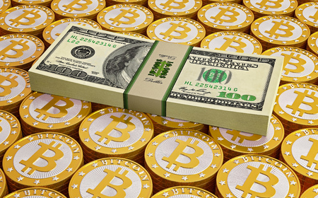 net trade: Bitcoins and Dollars