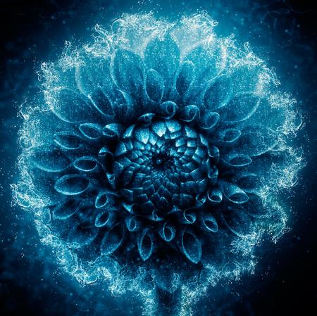 dahlia flower: dahlia flower made from water - water splash Stock Photo