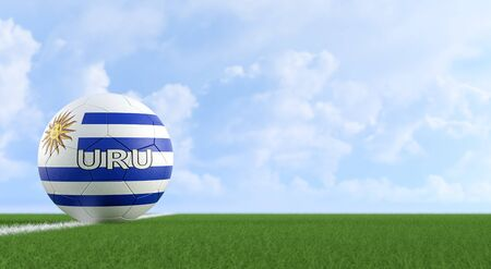 Soccer ball in Uruguay national colors on a soccer field. Copy space on the right side - 3D Rendering