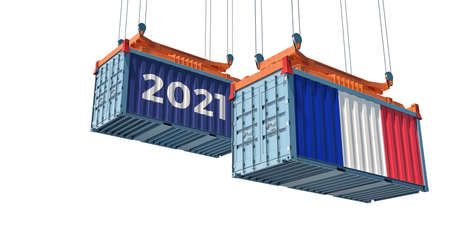 Trading 2021. Freight container with France flag. 3D rendering