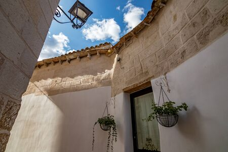 Two green potted plants grow hanging in two white pots around glass door in Laterza, Puglia region, Southern Italy in summertime, white wall background and puffy white clouds on blue sky 스톡 콘텐츠