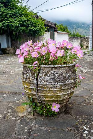 Beautiful cracked flower pot with blossoming pink flowers, street view, Ioannina island on lake Pamvotida near the beautiful small island near the Greek town of Ioannina. Early morning dark day scene