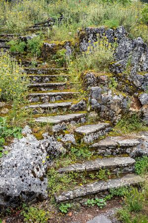Amazing vintage stone curvy stairs overgrown with wild blossoming herbs and grass, almost hidden in foliage. Spring moody day at Ioannina Island, Greece 写真素材