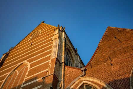 Side view, walls lit by falling sunlight of Collegiate Church Saint-Martin. Street image from below, clear blue sky, golden hour warm colors. Aalst, Flemish part of Belgium, Europe Archivio Fotografico