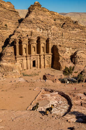 Ancient amphitheater and two defocused cats at the stunning Ad-Deir in ancient city of Petra, Jordan. Ad-Deir or The Monastery. Petra complex and tourist attraction, Hashemite Kingdom of Jordan