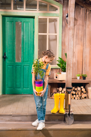 dungarees: little girl holding colorful flower pots with home plant and looking down
