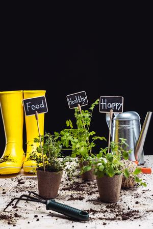 Rubber boots and garden tools Reklamní fotografie