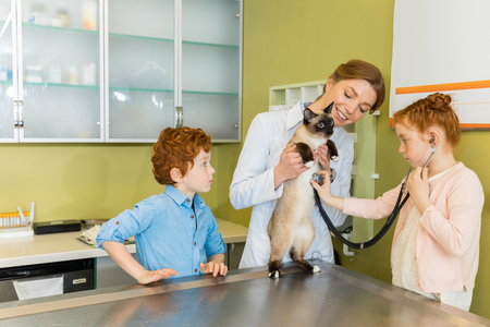Cute red haired girl ausculting cat at clinic