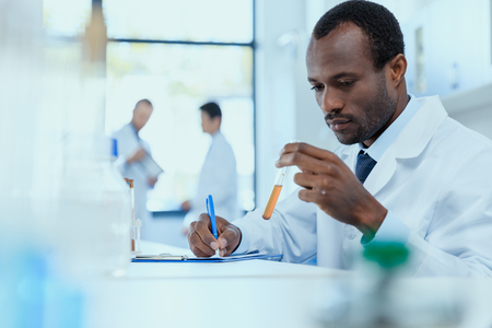 African american scientist in white coat holding and examining test tube with reagent