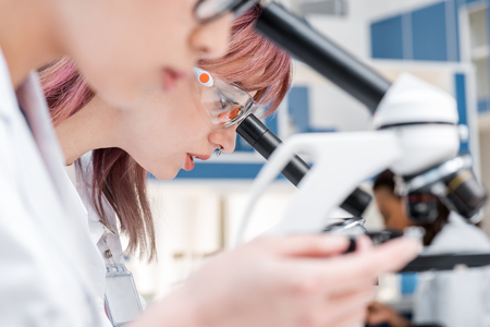 concentrate: scientists group working with microscopes in chemical lab