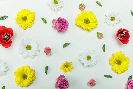 Top view of beautiful floral pattern with various blooming flowers isolated on white