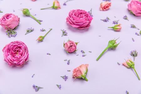 Close-up view of beautiful decorative pattern from pink roses and buds with small blue flowers