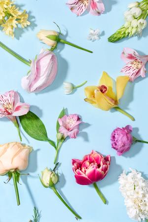 Bovenaanzicht van mooie bloeiende bloemen collectie geïsoleerd op blauw