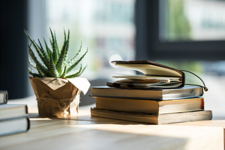 Close-up view of books, notebook with pencil and potted plant Stockfoto