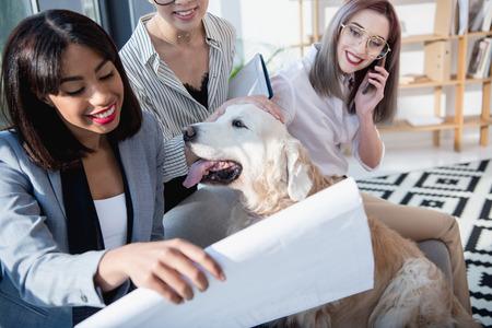 Multiethnische Geschäftsfrauen in der formellen Kleidung, die herum mit Hund im Büro herumalbert Standard-Bild - 82428471