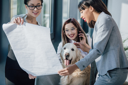 young businesswomen working with blueprint while playing with dog in office Standard-Bild