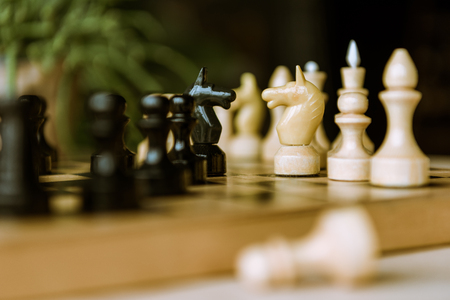 chess pieces knights facing each other for a standoff on chessboard Stok Fotoğraf