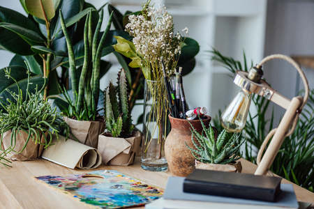 potted green plants, books and retro table lamp on wooden workplace