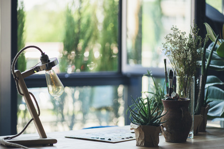 potted green plants, drawing equipment and retro table lamp on workplace