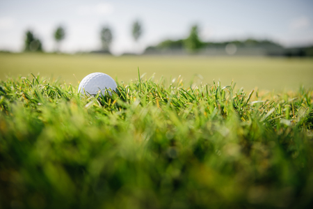 Close-up view of white golf ball on green grass