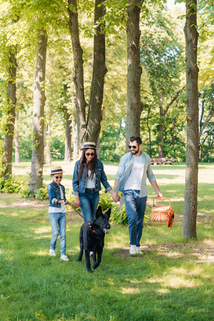 happy interracial family with dog holding hands and walking in sunny forest Stock Photo