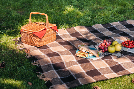 Wicker picnic basket and fresh fruits with sandwiches on plaid outdoors