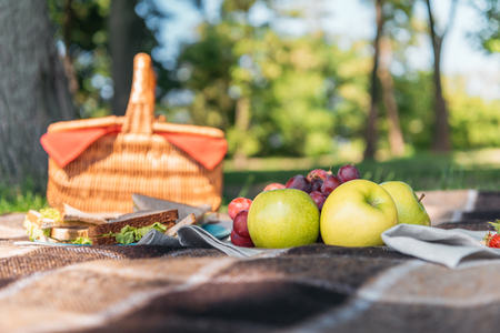 wicker picnic basket and fresh tasty fruits on plaid in park Stock fotó