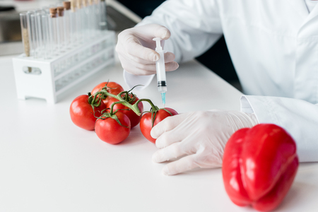 scientist holding syringe and making experiment with vegetables in lab Stock Photo