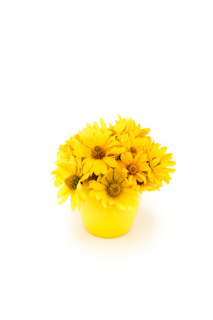 Close-up view of beautiful yellow chrysanthemum flowers in vase