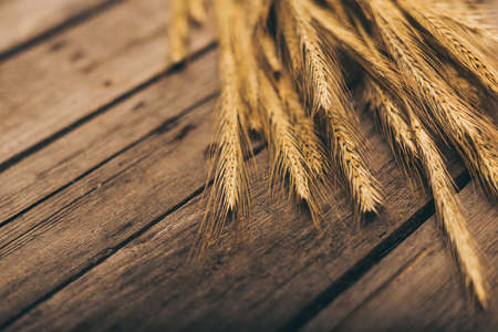 ripe wheat spikelets on rural wooden table