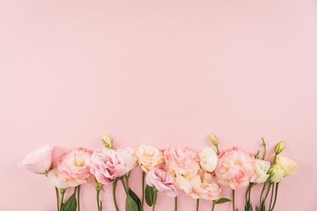 분홍색 배경에 고립 된 아름 다운 부드러운 개화 eustoma 꽃