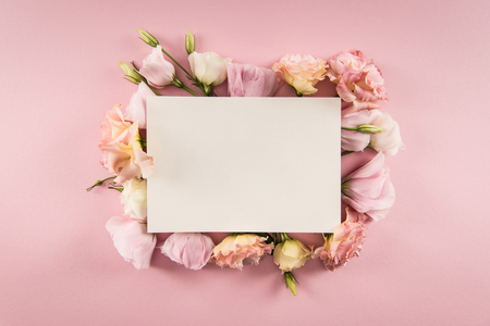 blank card and beautiful blooming flowers isolated on pink Banco de Imagens