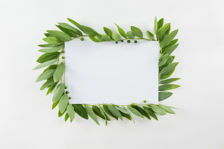 blank card with fresh green leaves isolated on white